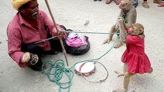 Download Sunny Leone Ko Bhi Piche Chod Diya Is Bandariya Ne - Comedy Video From My Phone Video