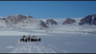 Download North Greenland Journey by Dog Sled with Inuit Hunters Video