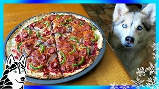 Download DIY PIZZA FOR DOGS | Dog friendly Pizza | DIY Dog Treats | Snow Dogs Snacks 66 Video