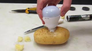 Download Faltou Luz em Casa? Liga na Batata. - Mágica - Light a Bulb with Potato - Magic. Video