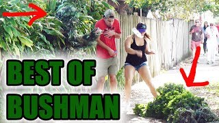 Download BEST OF BUSHMAN - FUNNY clips! Scare prank - funny video Video