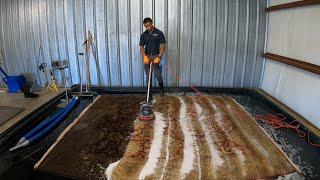 Download Satisfying 8x10 wool area rug washing Video