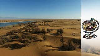 Download Can A Desert Be Reclaimed For Human Habitation? Video