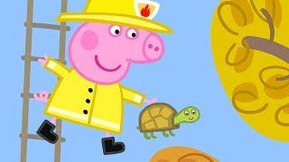 Download Peppa Pig Français | Compilation d'une heure 2 | Dessin Animé Pour Enfant Video