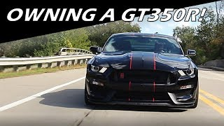 Download What It's Like To Own A Shelby GT350R! Video