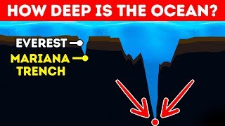 Download How Deep Is the Ocean In Reality? Video