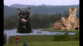 Download Jurassic Park, but with Cats Video