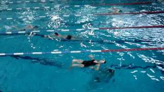 Download Sauvetage en piscine Longchamp Video