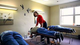 Download Network Spinal Analysis Level One Demonstration Video