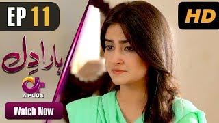 Download Haara Dil - Episode 11 | Aplus Dramas | Danish Taimoor, Hiba Bukhari | Pakistani Drama Video