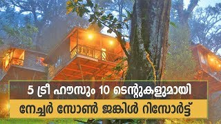 Download Nature Zone Jungle Resort Munnar - Excellent place for Honeymoon & Family Trips Video