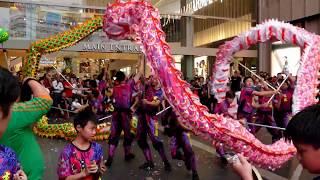 Download World Dragon & Lion Dance Day 2018 (Malaysia) Double Dragon Dance - Xuan Long 世界龙狮节(马来西亚站)玄龍《 雙龍表演》 Video