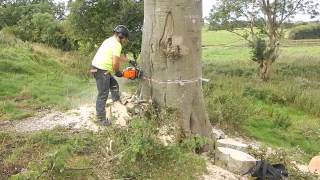 Download stihl ms 361 Video