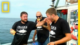 Download Food Fight | Wicked Tuna Video
