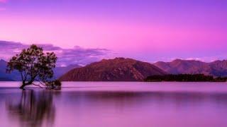 Download 432 Hz - Deep Sleep Music, Peaceful Music, Relaxing Music for Stress Relief, Healing Meditation Video