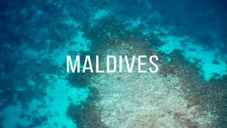 Download 2 minutes in... MALDIVES Video