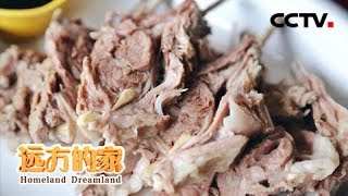 Download 《远方的家》 家乡的味道 西北羊肉鲜 20190213 | CCTV中文国际 Video