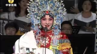 Download 2012北京新年音乐会 胡文阁 梨花颂 Video