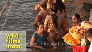 Download Women bathing in Ganges river during Shivratri, Varanasi Video