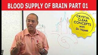 Download Blood Supply to Brain - Neuroanatomy - Part 1/11 Video
