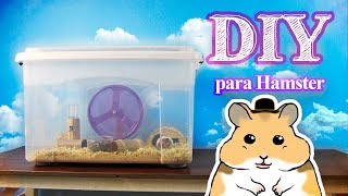 Download DIY Gaiola para Hamster com Caixa Organizadora Video