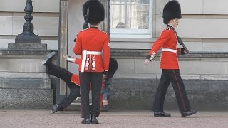 Download Buckingham Palace guard slips and falls in front of hundreds of tourists Video