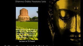 Download Dhammacakkappavattana Sutta Video
