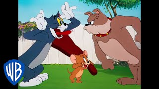 Download Tom & Jerry | Classic Cartoon Compilation | Tom, Jerry, & Spike Video