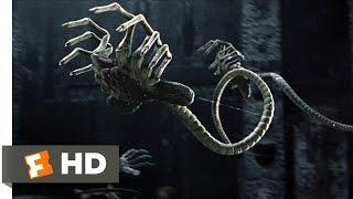 Download AVP: Alien vs. Predator (2004) - Sacrificial Chamber Scene (1/5)   Movieclips Video