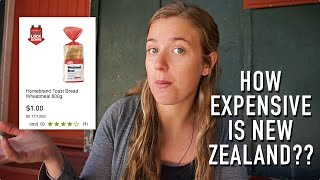 Download TRAVEL TIPS: HOW EXPENSIVE IS NEW ZEALAND?? Video