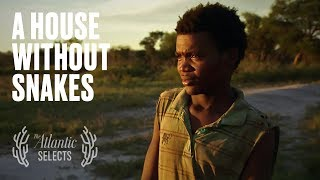 Download The Difficult Choice Facing Young Bushmen Video