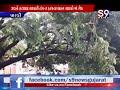 Download પારડી : હોસ્પિટલ સર્વિસ રોડ પર એક તોતિંગ પડ્યું વૃક્ષ Video