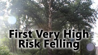 Download First Dangerous/High Risk/Deadly Tree Felling Video