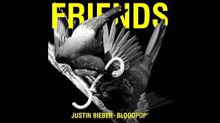 Download Justin Bieber & BloodPop® - Friends Video