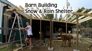 Download Barn Building - Animal Winter & Rain Shelter Video