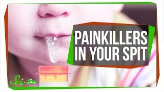 Download The Super Strong Painkiller Hiding in Your Spit Video