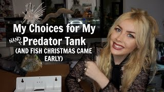 Download Choosing Fish for My Predator Tank (PLUS FISH CHRISTMAS) Video