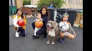 Download Ball challenge with Tyson. Video
