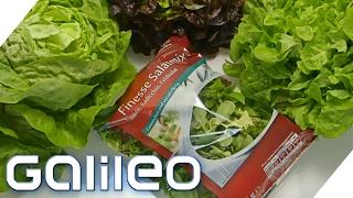 Download Wie frisch und gesund ist Fertig-Salat?   Galileo Lunch Break Video
