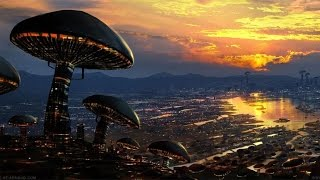 Download Paul Stamets - The Future is Fungi [how to save the planet] Video