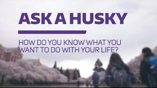 Download Ask a Husky: How do you know what you want to do with your life? Video