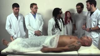 Download Away`s anatomy - LAANATO UFRJ Video