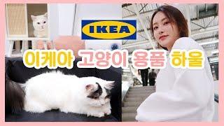 Download 이케아 고양이가구 출시!✨ 하울 ver 🐈 Video