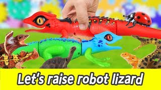 Download [EN] Let's raise robot lizard!! cocos animation, animals names for kids, collectaㅣCoCosToy Video