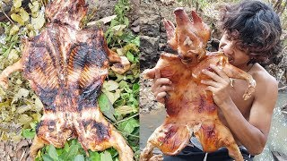 Download Primitive Times: Roasted pig on an open fire - Primitive Technology Video