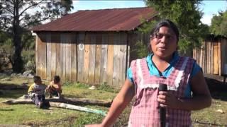 Download La familia López Hernández padece una de las siete mil enfermedades raras (1a parte) Video