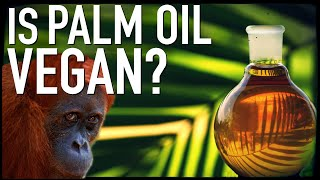 Download Is Palm Oil Vegan? Video