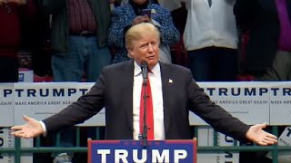 Download Donald Trump Reacts to Hitler Comparison, Bloomberg, Polls Video