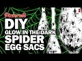 Download DIY Spider Egg Sacs, Corinne VS Pin #31 Video