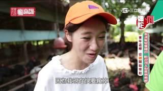 Download 雞飛狗跳?!LuLu超爆笑彌陀衝浪雞體驗【玩客瘋高雄】 Video